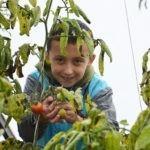 Щедрий вівторок! Допоможіть фермі для вразливих дітей і сума пожертви подвоїться!