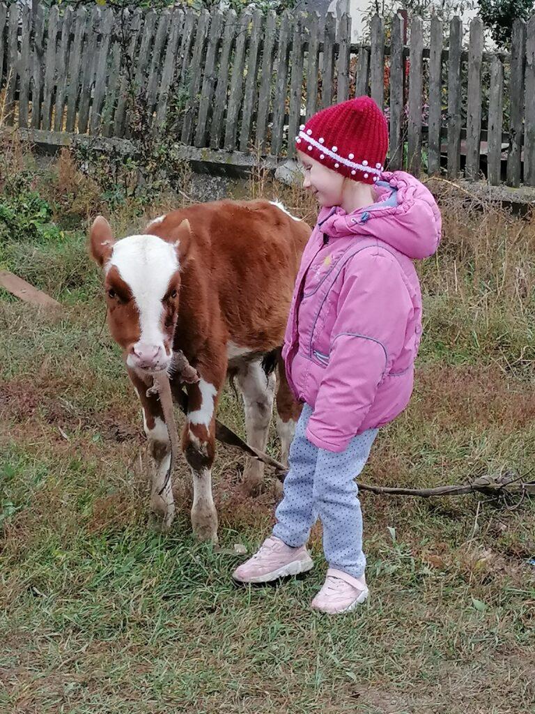 Первые шаги в создании собственной фермы!